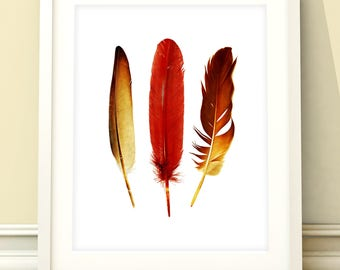 Feather print, feather wall art, feathers wall art, feather art, home decor, wall art, feathers, feathers art, feathers decor