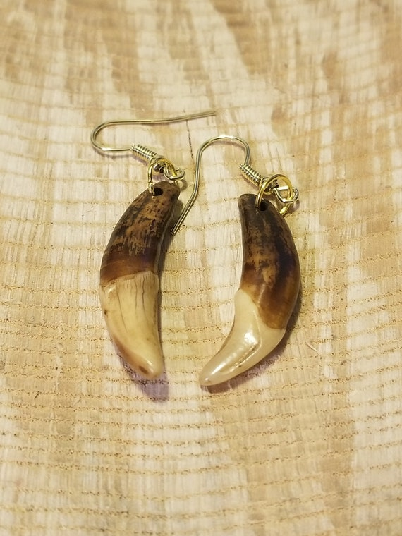 Handmade Real Tibetan Wolf Tooth Gold Earrings Native American Tribal Outdoors Primal Fang Fashion Art Collection (E217)