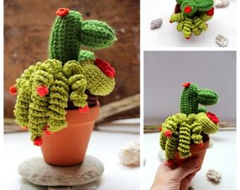 Cactus - succulent garden crochet