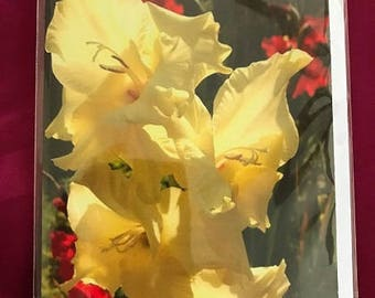 Blank Greeting Card 7: Yellow Gladiola Flower for You