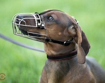 Dog Muzzle Dachshund Metal Wire Basket with Adjustable Leather Straps