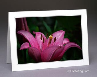 Photo Greeting Card or Wall Print, Pink Lilly – Item#S1245