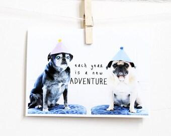 Adventure Pug Birthday Card