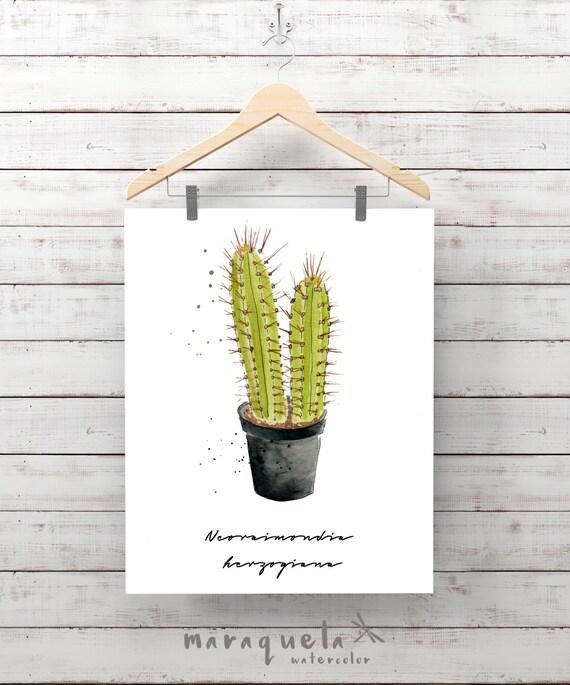 SUCCULENT PLANT illustration III Watercolor, fat Cactus, Cacti, Cactées, Plante Succulente, grasses, Cactos, decor, gift ideas for home art