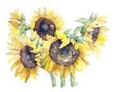 Sunflower Painting - Prin...