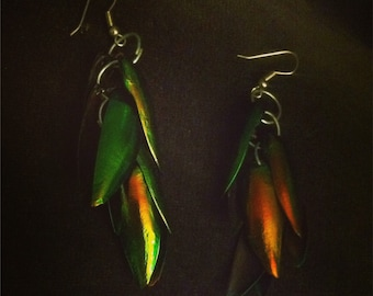Beetle Wing Earrings