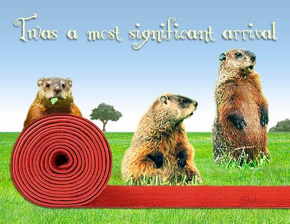 lustige murmeltier geburtstagskarte roten teppich willkommen. Black Bedroom Furniture Sets. Home Design Ideas
