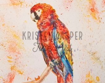 Drippy Parrot Original Watercolor on Yupo Paper, with Gouache