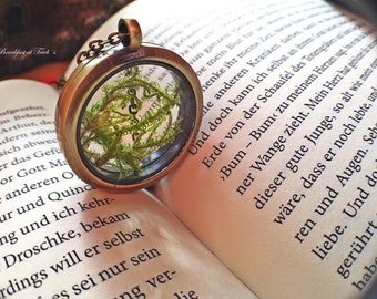 Glass locket with real moss in bronze