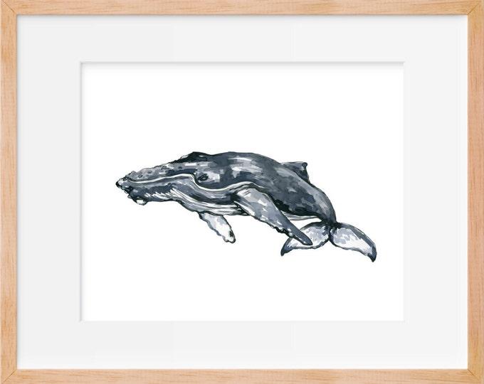 Humpback Whale 104 Print, Humpback Whale Art, Humpback, Whale Art, Whale Watercolor, Whale Wall Art, Whale Decor, Whale Illustration, Home D