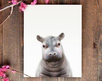 Hippo print, Safari animals, PRINTABLE art, Safari animal nursery, Nursery decor, Animal art, Baby animals, Nursery prints, The Crown Prints