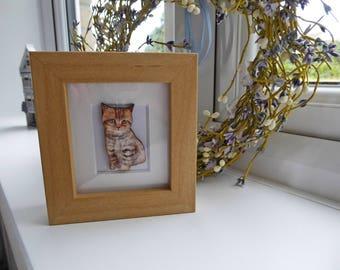 Tabby Cat Miniature Box Frame Art