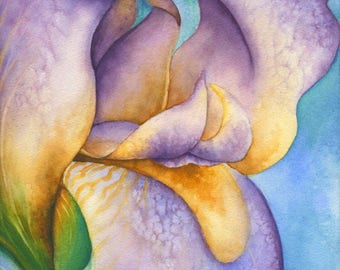 Iris Watercolor Blank Inside Greeting Card, Notecards, Set of 5, with Envelopes, A2 Size
