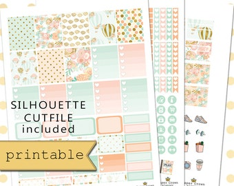 Printable Planner Stickers for use with Erin Condren Life Planner/Weekly Planner Sticker Kit/Hot Air Ballon Digital Sticker Set