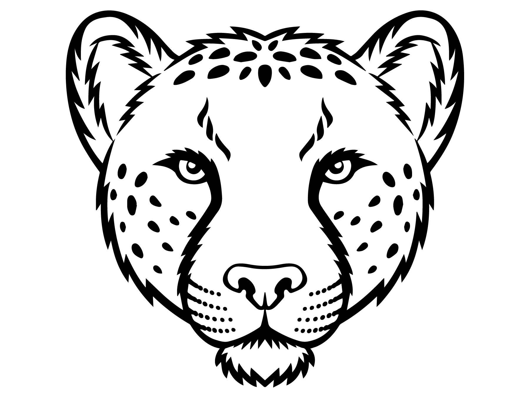 cheetah 7 leopard jaguar wild cat spots wildlife wild animal. Black Bedroom Furniture Sets. Home Design Ideas