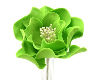 Lime Green Open Rose