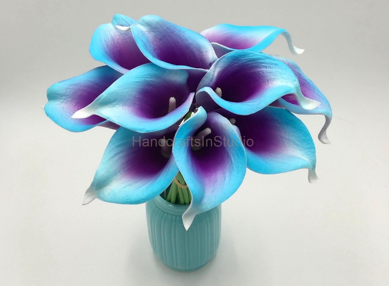 flowers purple and blue - Vatoz.atozdevelopment.co