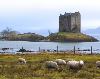 Monty Python's Castle Stalker