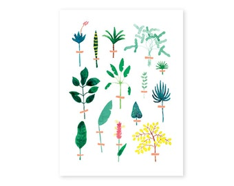 HERBARIUM illustration poster