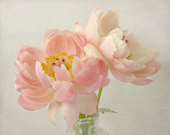Coral Peony Photo,  8 x 10 Print, 11 x 14 Print, Floral Art Print, Peach Peony Print, Peony Art, Still Life Photography