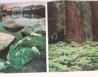 Two Vintage 8 x 10 Photos by David Muench