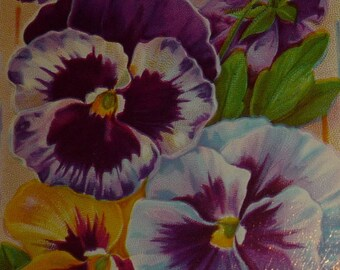 Pretty Purple and Yellow Pansies Antique Birthday Postcard