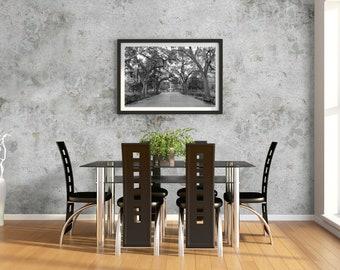 Black and White Savannah Forsyth Park Photo Print | Savannah Georgia Wall Art | Black and White Photography | Large and Custom Print Sizes