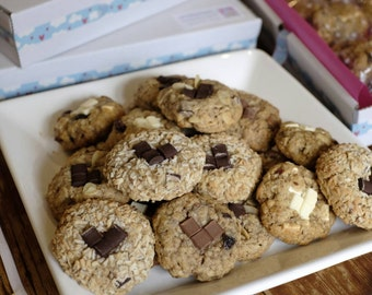 14 Classic Variety Box Lactation Cookies