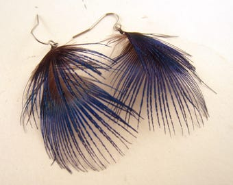 Peacock Feather earrings blue extra small