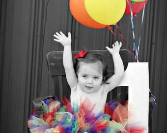 True Rainbow Tutu, Rainbow tutu, 1st Birthday Tutu, Newborn Tutu, Baby Tutu, Baby Girl 1st Birthday Outfit, Tutus for Children, 1st Birthday