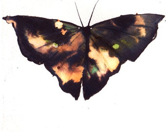 Asia inspired black and gold butterfly with green original watercolour painting