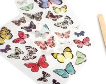 Butterfly Hazelwood Rub-Ons 2/Pkg • 1 Canoe 2 American Crafts (376890)