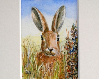 Autumn Brown Hare in long grass, original watercolour Aceo mounted, ready to frame