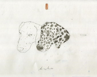 Drawing of 2 Dalmatians by Dogscanbark