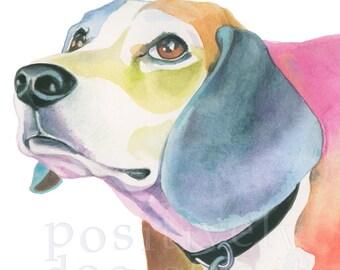 Beagle fine art dog print. Limited edition.