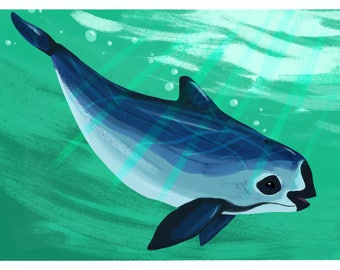 Endangered Species Postcard: Vaquita