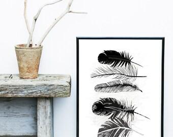 Feather Art print, Giclee print, Scandinavian Art, Feather Print, Minimalist Poster, Grey Wall Decor, Wall Art, Art Print,