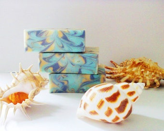 2 x Sea Salt Soaps Seaweed Soap Natural Soap Skin Detox Soap Facial Soap Irish  Soap Sea Salt Soap