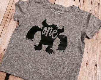 Monster Birthday shirt, first Birthday shirt, monster family shirts, monster theme