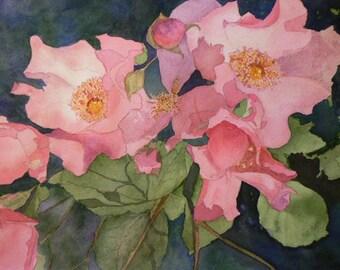 Original Fine Art - Apple Blossoms