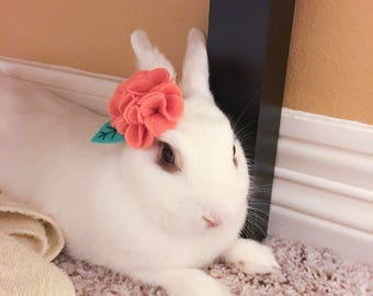 Pet Rabbit Flower Accessory, Pet Rabbit Flower Crown, Pet Rabbit Carnation Accessory, Carnation Flower Pet Accessory