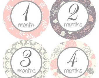 Baby Month Stickers Baby Milestone Stickers Baby Girl Pink Grey Floral Bodysuit Stickers Month Stickers Baby Shower Gift Photo Prop Mary1