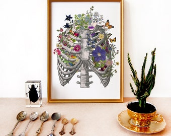 Anatomical ribs and flowers art print - ribcage engraving - floral - archival print