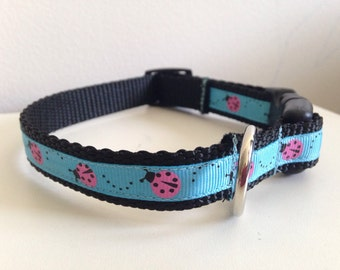 Blue with Pink Ladybugs 5/8inch Dog Collar