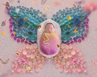 Butterfly Poppet