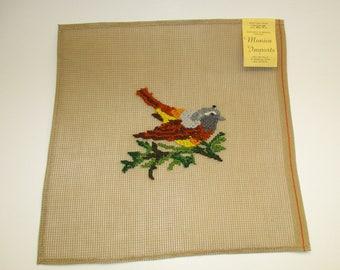 Thrush Bird Preworked Needlepoint Canvas, DIY Bird Pillow, Fiber Art, 12 x 12 Monica Imports
