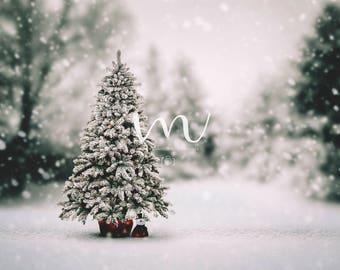 Christmas Tree- Digital Background