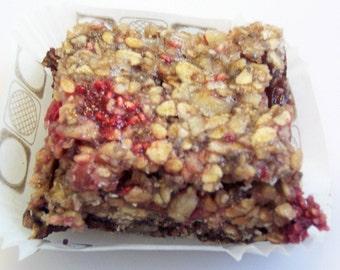 30 Paleo RED RASPBERRY, Dark CHOCOLATE, Organic Snack Bars, Sugar Free, Gluten Free, Vegan, 27 Flavors,