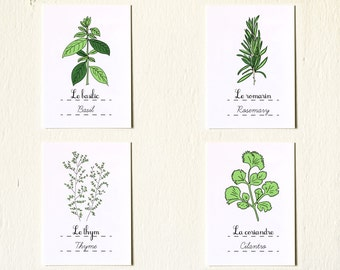 Kitchen Art Prints 'Herbs' set of 4 5x7 giclee art prints Basil Rosemary Cilantro Thyme Retro Green