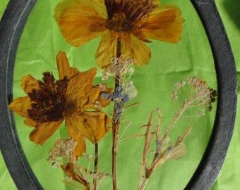 Vintage heavy Window Sun Catcher Dried Flowers Window Suncatcher